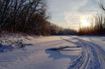 Лыжня на острове Коровий